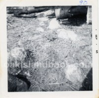 Description on back of photo: Stone Triangle told about in artical on page 12 (scrapbook), Triangle is under logs (See Documents The Chronical Herald Nov 5 1965)