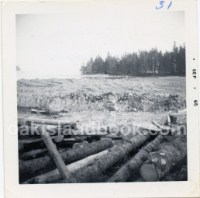 Description on back of photo: Stone Triangle under logs. Logs was put there over the triangle for protection of the stone triangle to keep it from being damaged (See Documents The Chronical Herald Nov 5 1965)